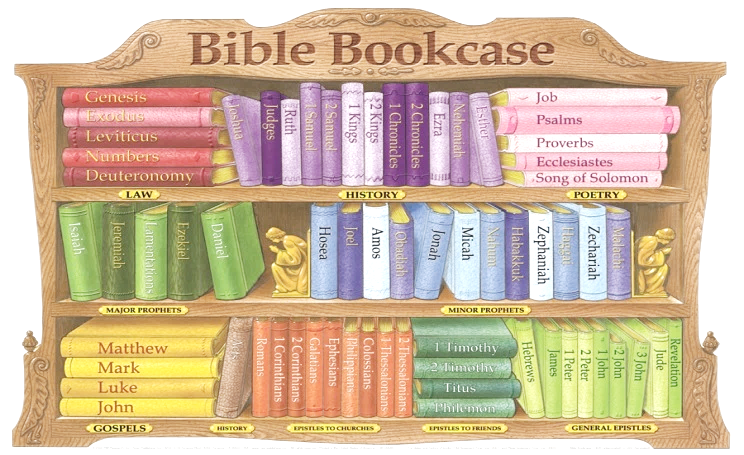 bookcase bible